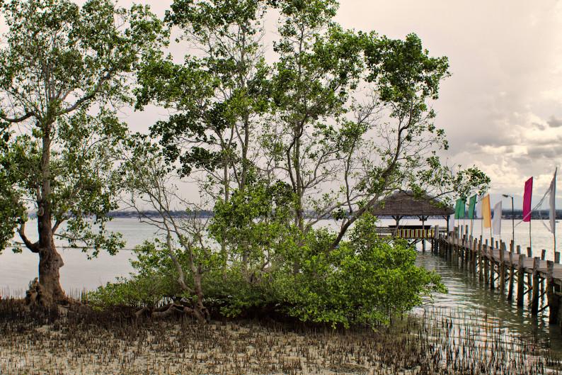 В одном из резортов на острове Самал