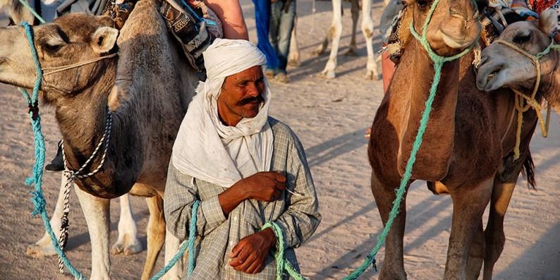 pogonshik-tunisia
