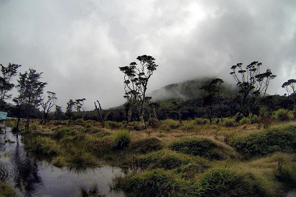 Озеро Венадо - кратер вулкана.