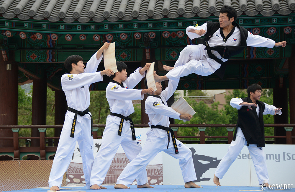 an introduction to the sport and culture of taekwondo