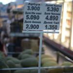 Цены на дыни за штуку в магазине в Ташкенте.