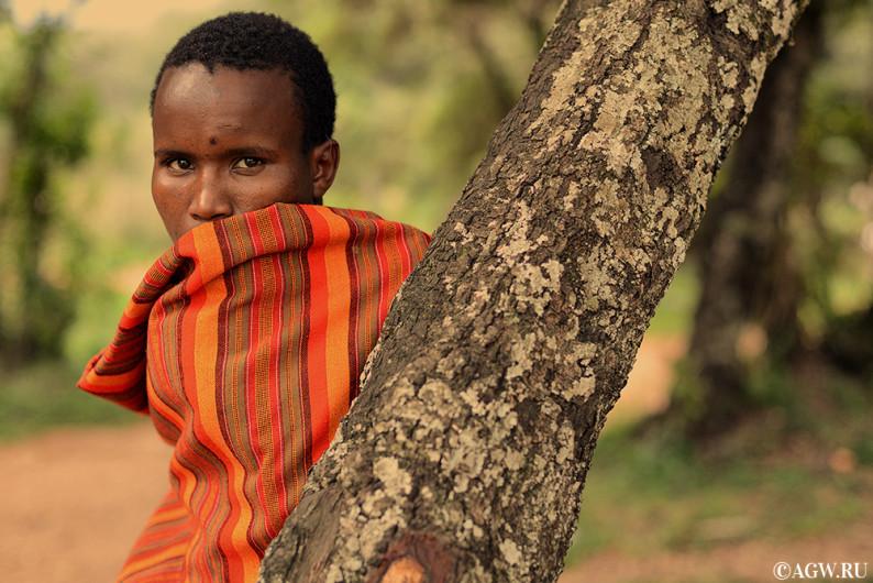 Племя Масаи в Африке