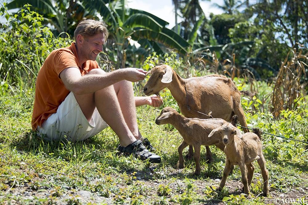 Сыромясоед Николай дает наставления козам.