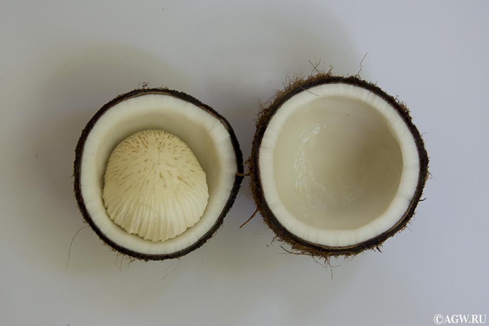 """Открытый кокос с """"сердцем ангела"""" внутри."""