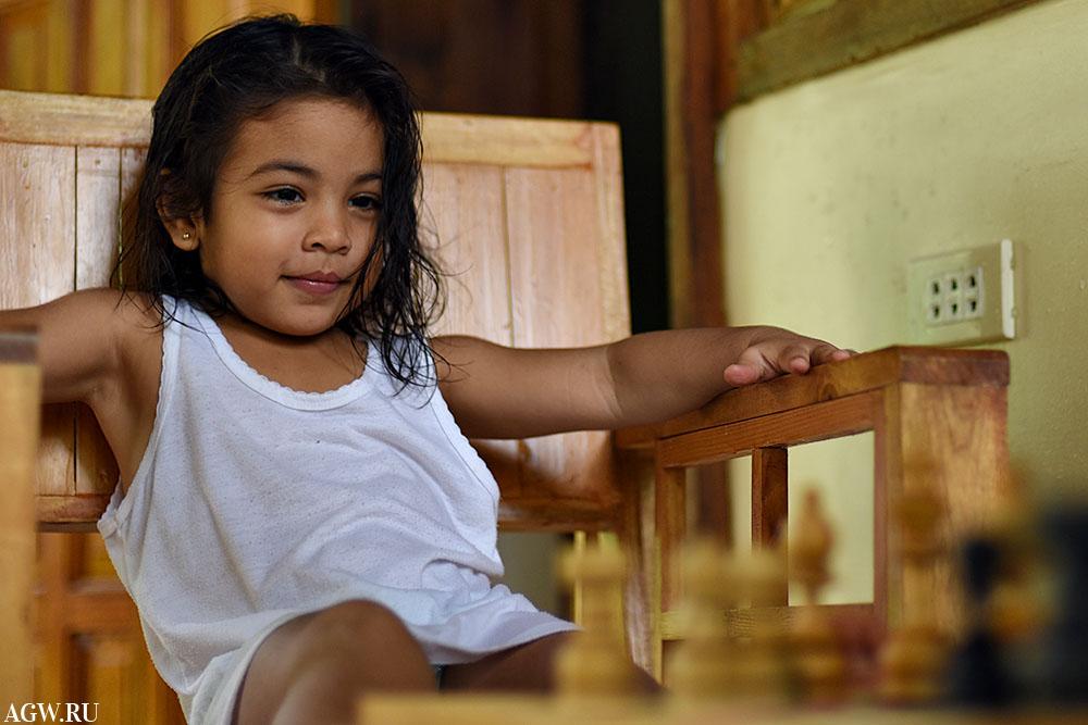 Каталея за шахматной доской
