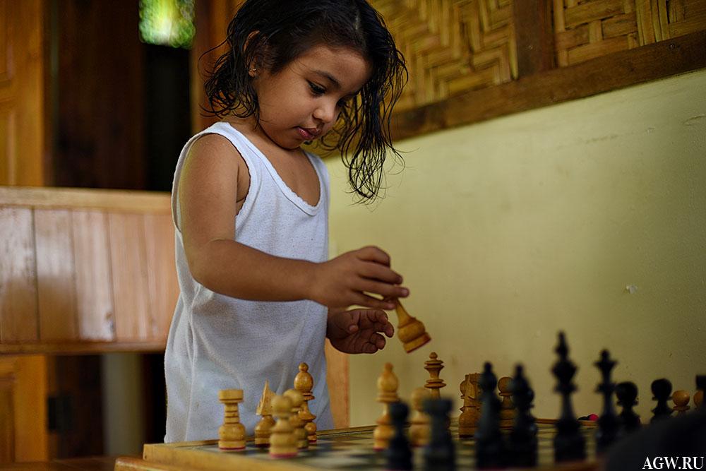 Каталея и шахматы